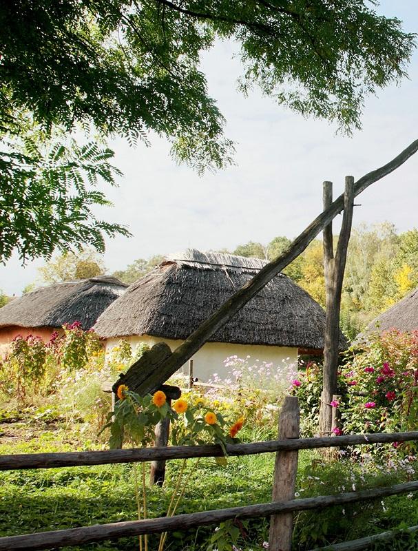 Украинская деревня №1  печать на холсте, натянут UkrainArt - фото 2