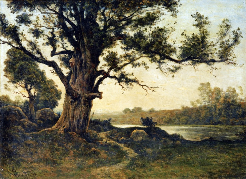 Старый дуб  печать на холсте, натянут Арпиньи Анри Жозеф - фото 1