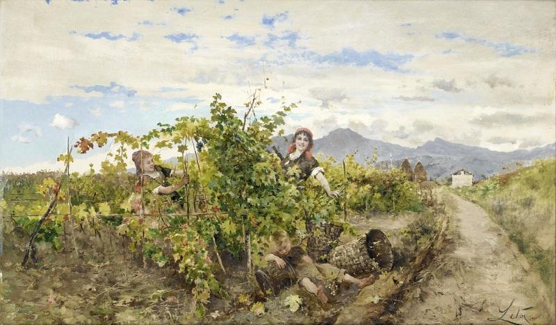 Ragazze raccolta uva  печать на холсте, натянут Лето Антонио - фото 1