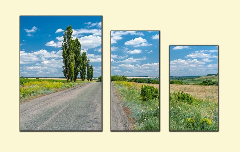 По дороге в украинскую деревню №1  печать на холсте, натянут UkrainArt - фото 1