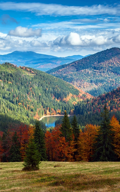 Карпаты осенью №1  печать на холсте, натянут UkrainArt - фото 3