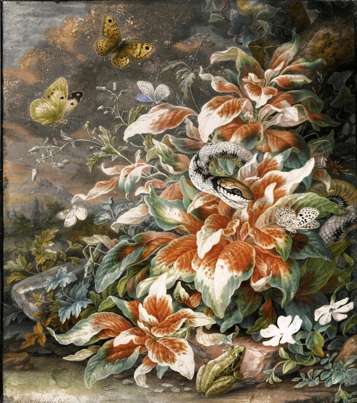 Лесной натюрморт со змеей, лягушкой, кузнечиком и бабочками вокруг большого растения  печать на холсте, натянут Хенстенбург Герман - фото 1