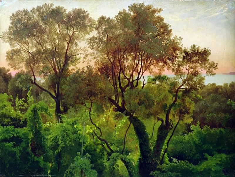 Склон с оливковыми деревьями  печать на холсте, натянут Гурлитт Луис - фото 1
